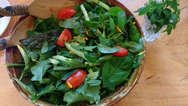 Garden green salad with lemon myrtle and mountain pepper salad dressing