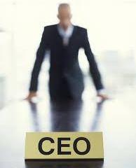 CEO career
