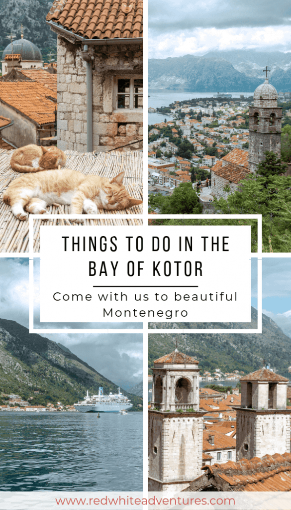 A pinterest pin of things to do in Kotor, Montenegro.
