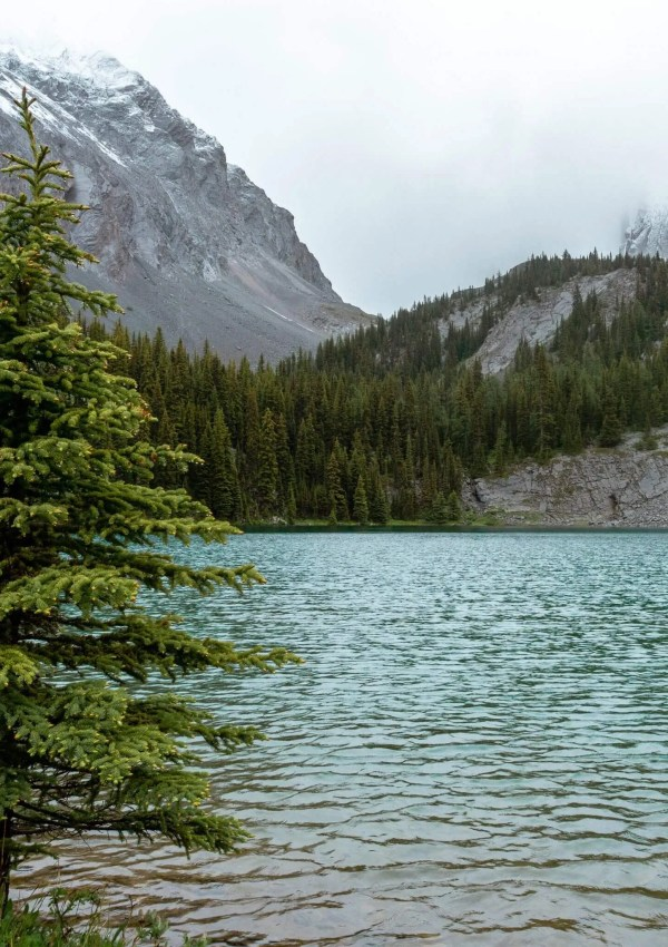 Chester Lake Trail – Easy Day Hike near Canmore