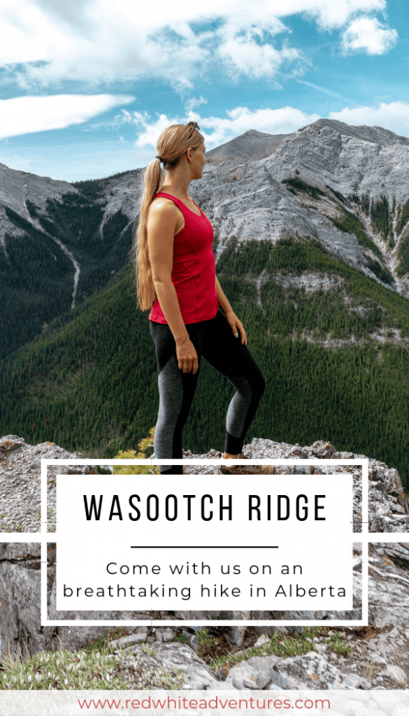 Pin for Pinterest of Wasootch Ridge.