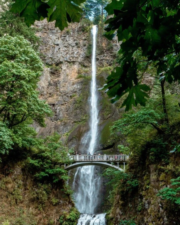 Multnomah Falls seen from the beginning of the trail