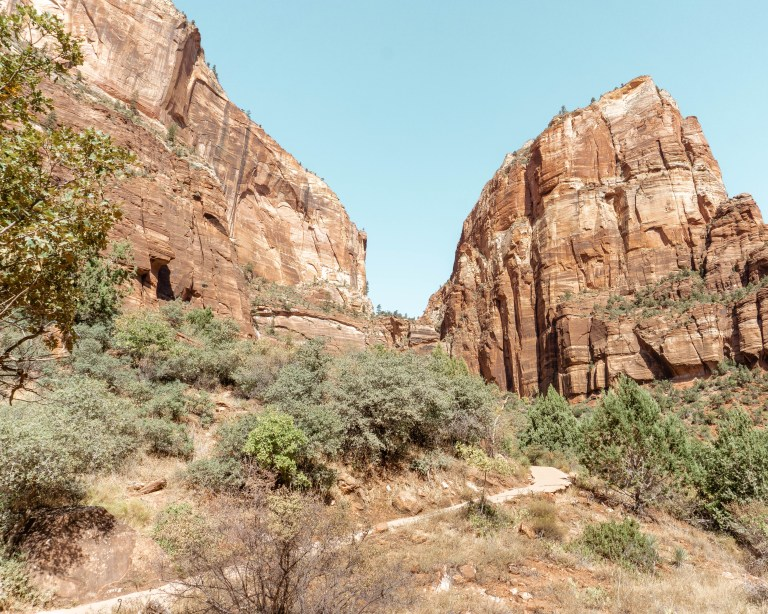 Walk up to Scout Lookout in Zion.