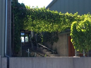 The back entrance to the Lindsay House at Paul Hobbs