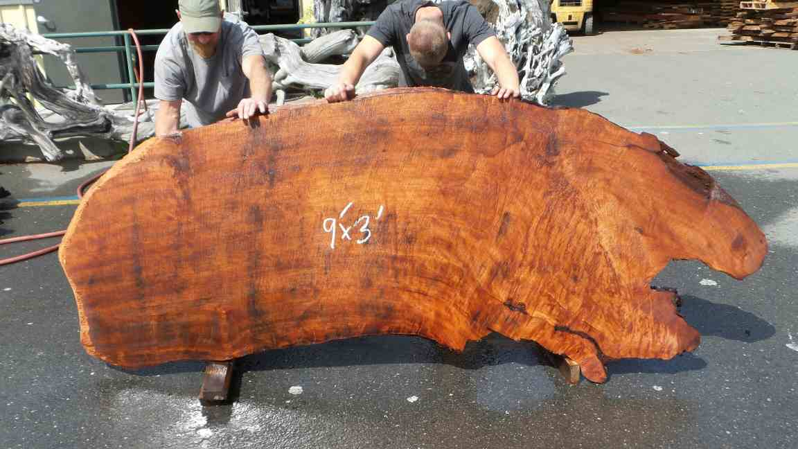 Redwood Burl Slab - Coffee Table Slab