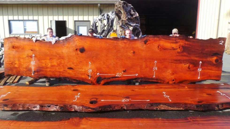 Old Growth Live Edge Slab of Redwood for Conference Table DT-317 ~ 20' x 42-54″ x 3″ ~ $$$$