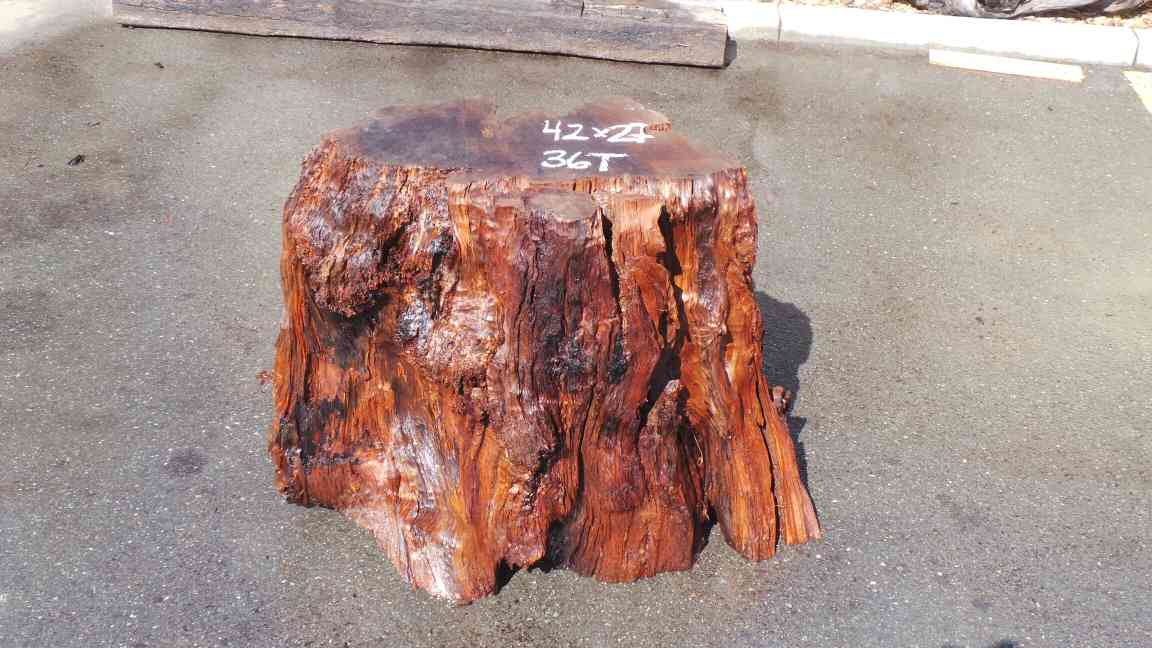 Redwood Stump Table Base - Raw Stump Cut