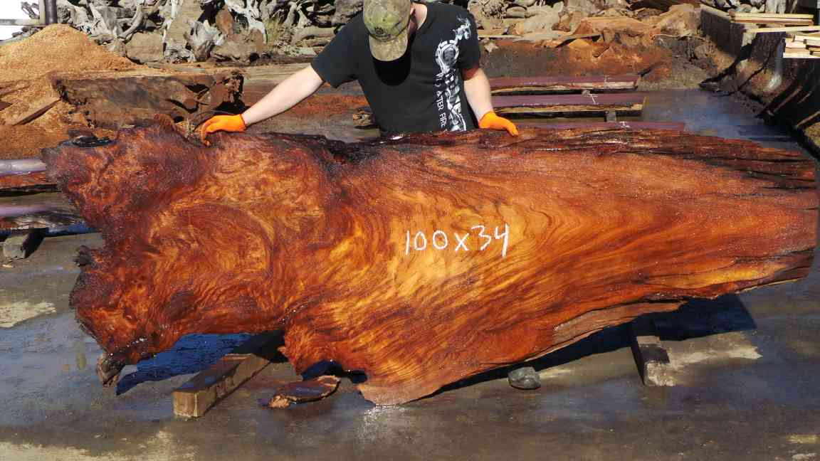Redwood Burl Tree Slab Kitchen Countertops