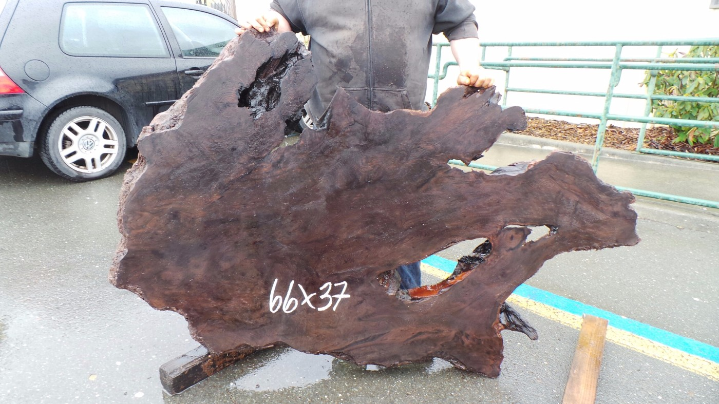 Dark Redwood Burl Slab - Unique Shape for Abstract Rustic Furniture