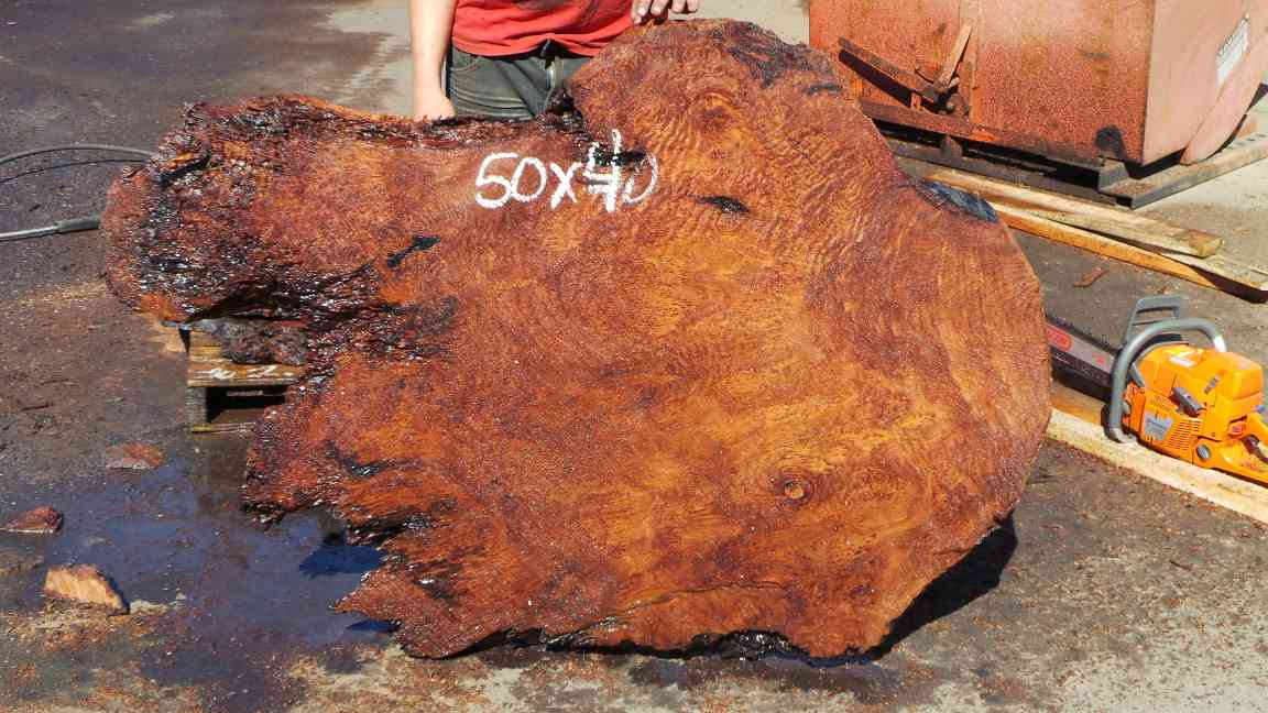 Redwood Root Slab ~ Raw Wood Edge Table