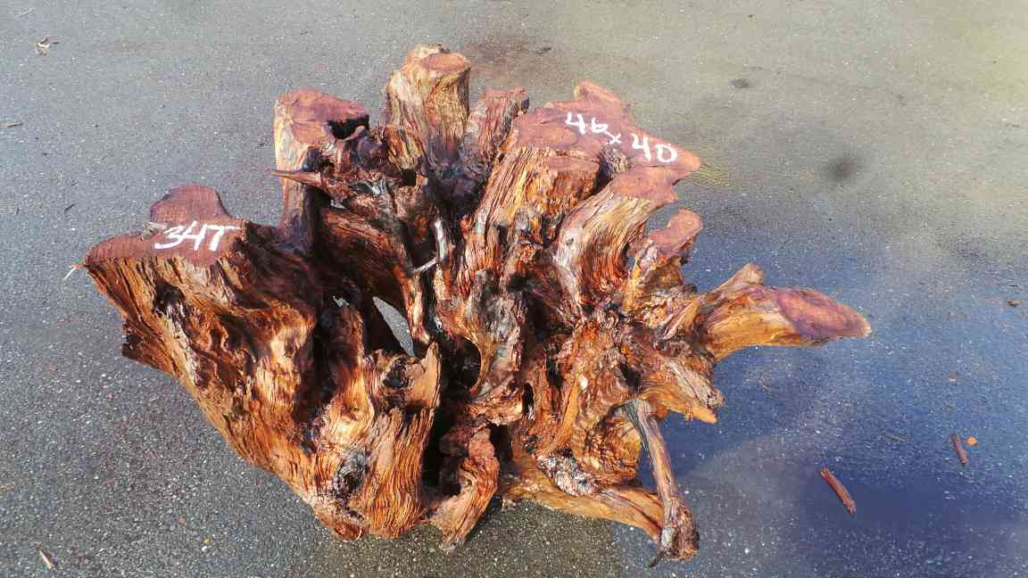 Redwood Stump Wood Roots Furniture Bases and Tables