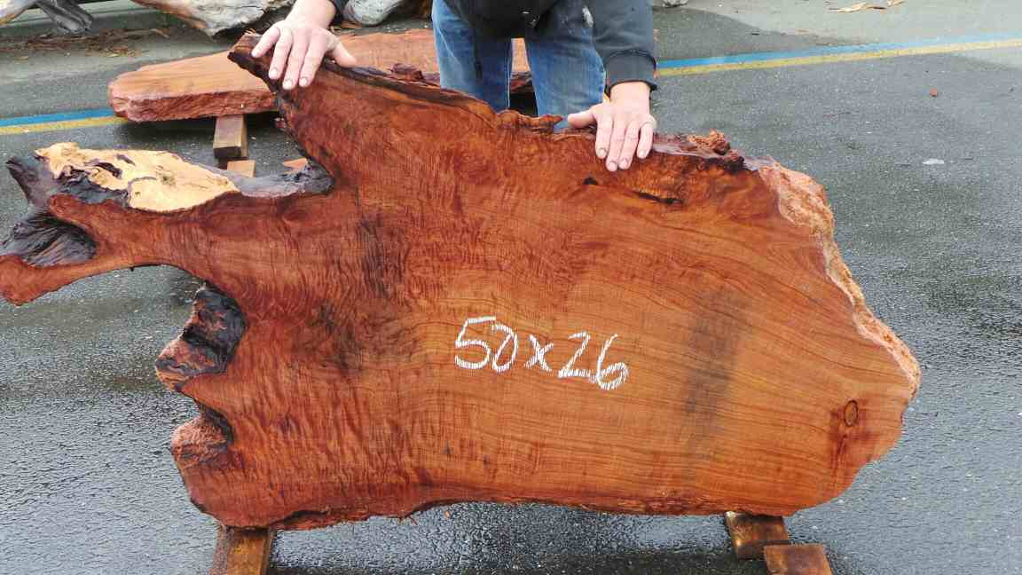 Shaped Burl Wood - Fun Redwood Burl Shapes Slabs
