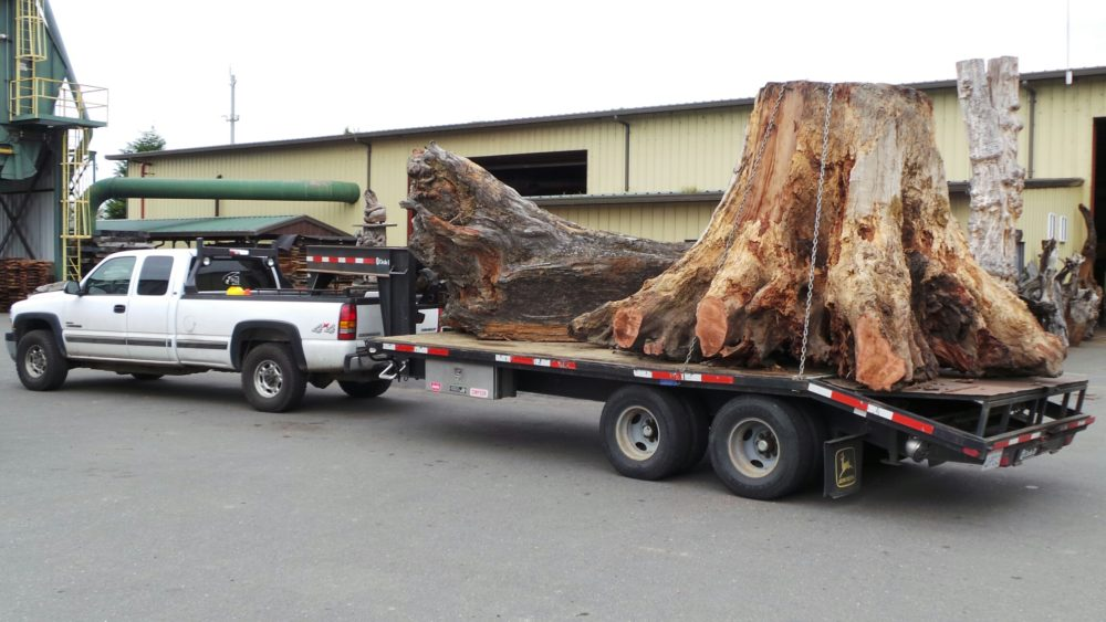 Ethical Sourcing Redwood Burls Supplies and Quality