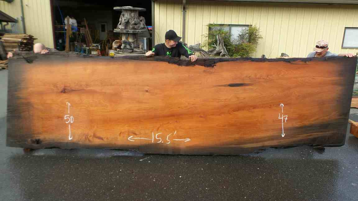 Mineral stained redwood burl slab for dining table