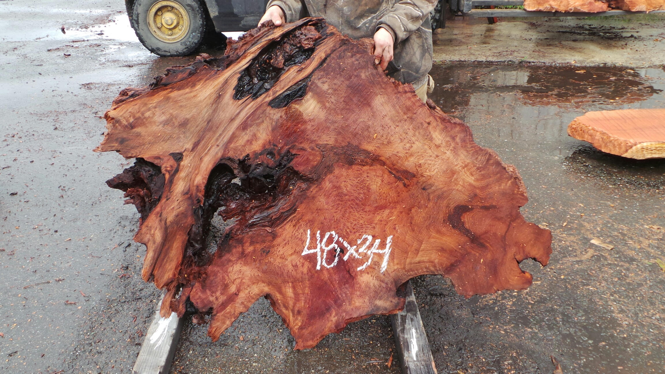 Unusual Shaped Redwood Burl Slab