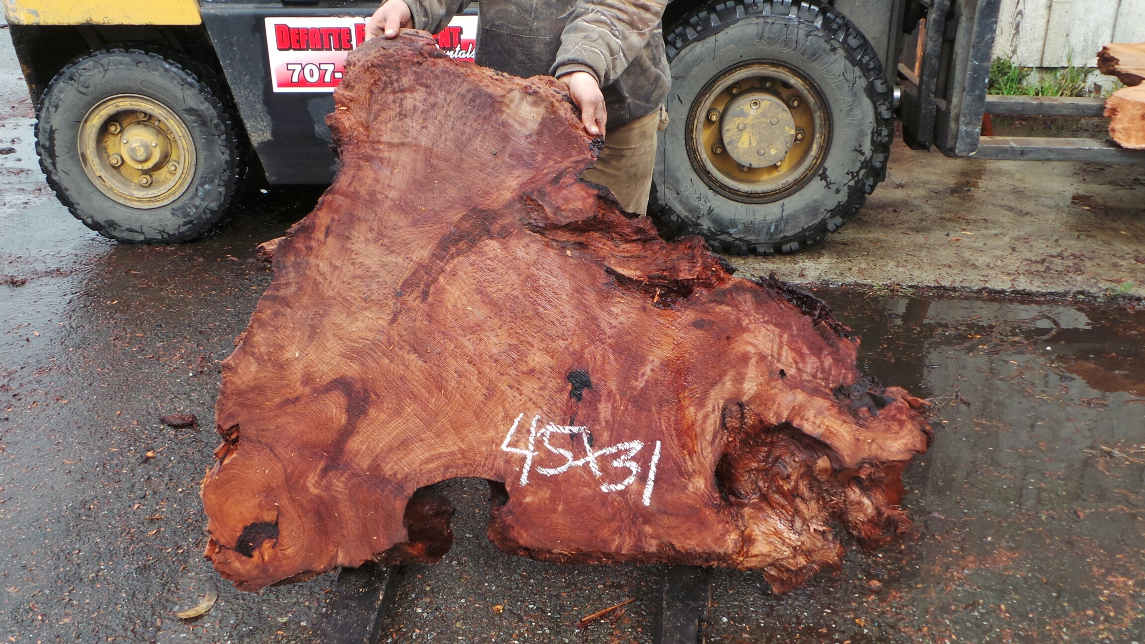 Eccentric Shape Coffee Table Slab - Redwood Burl