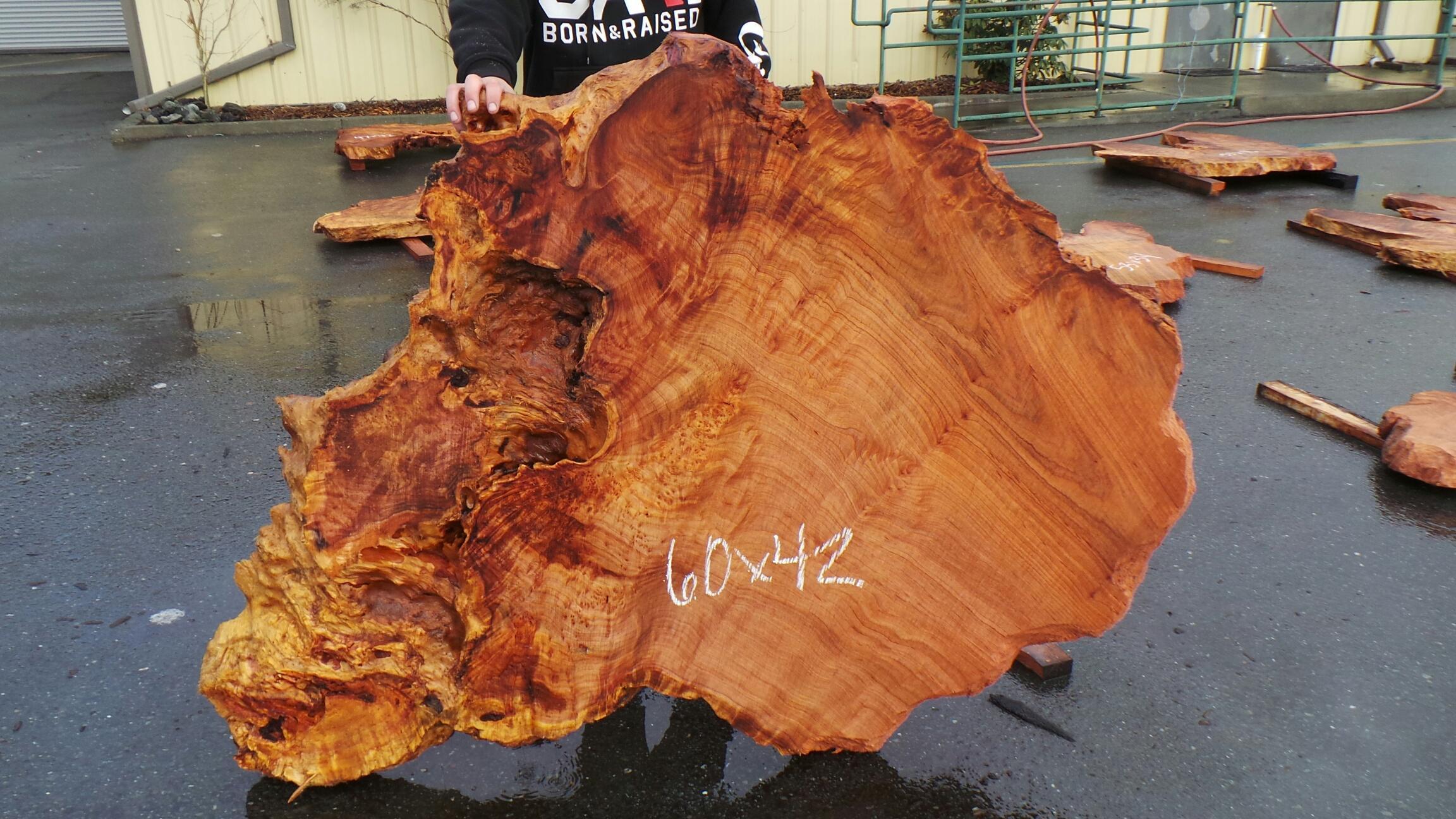 Bright Redwood Slab - Detail of Birdseye Burl