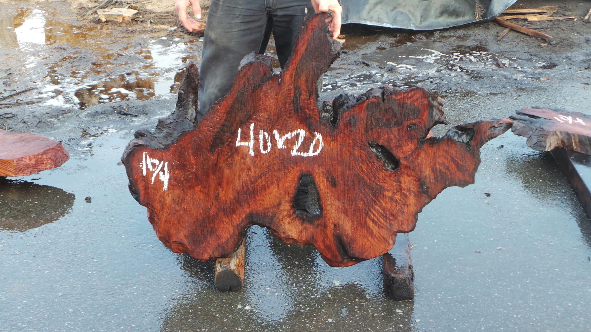 Burl Wood Art - Redwood Rustic Woods