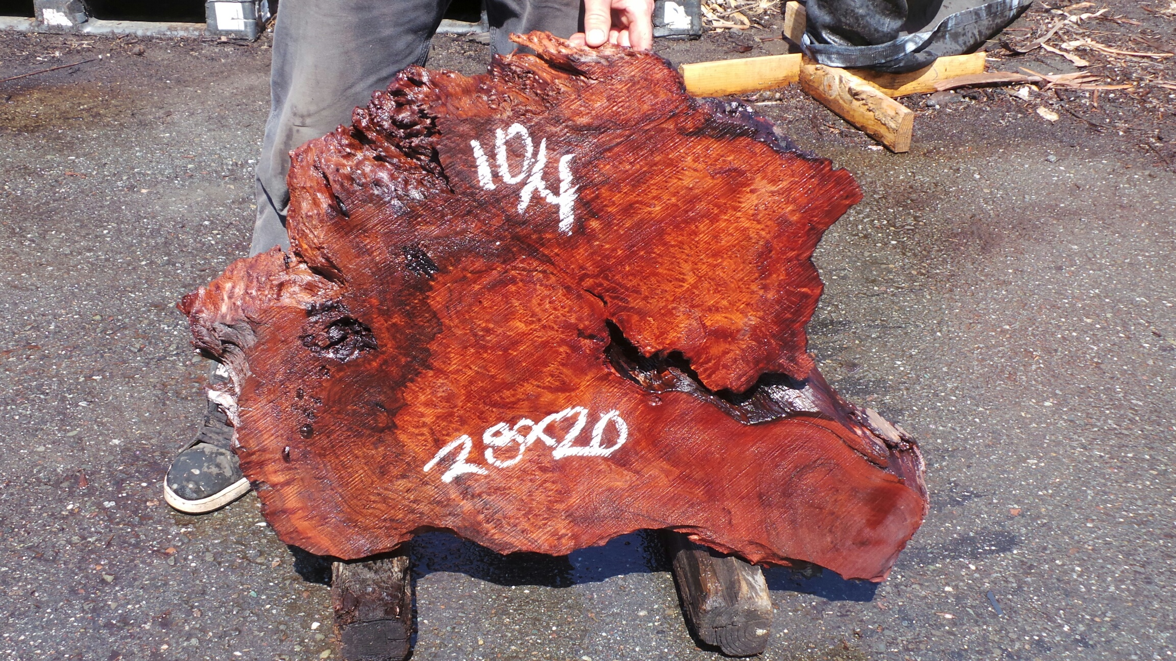 Figured Burl Slab - Salvaged Redwood for Coffee Table Tops and Surfaces