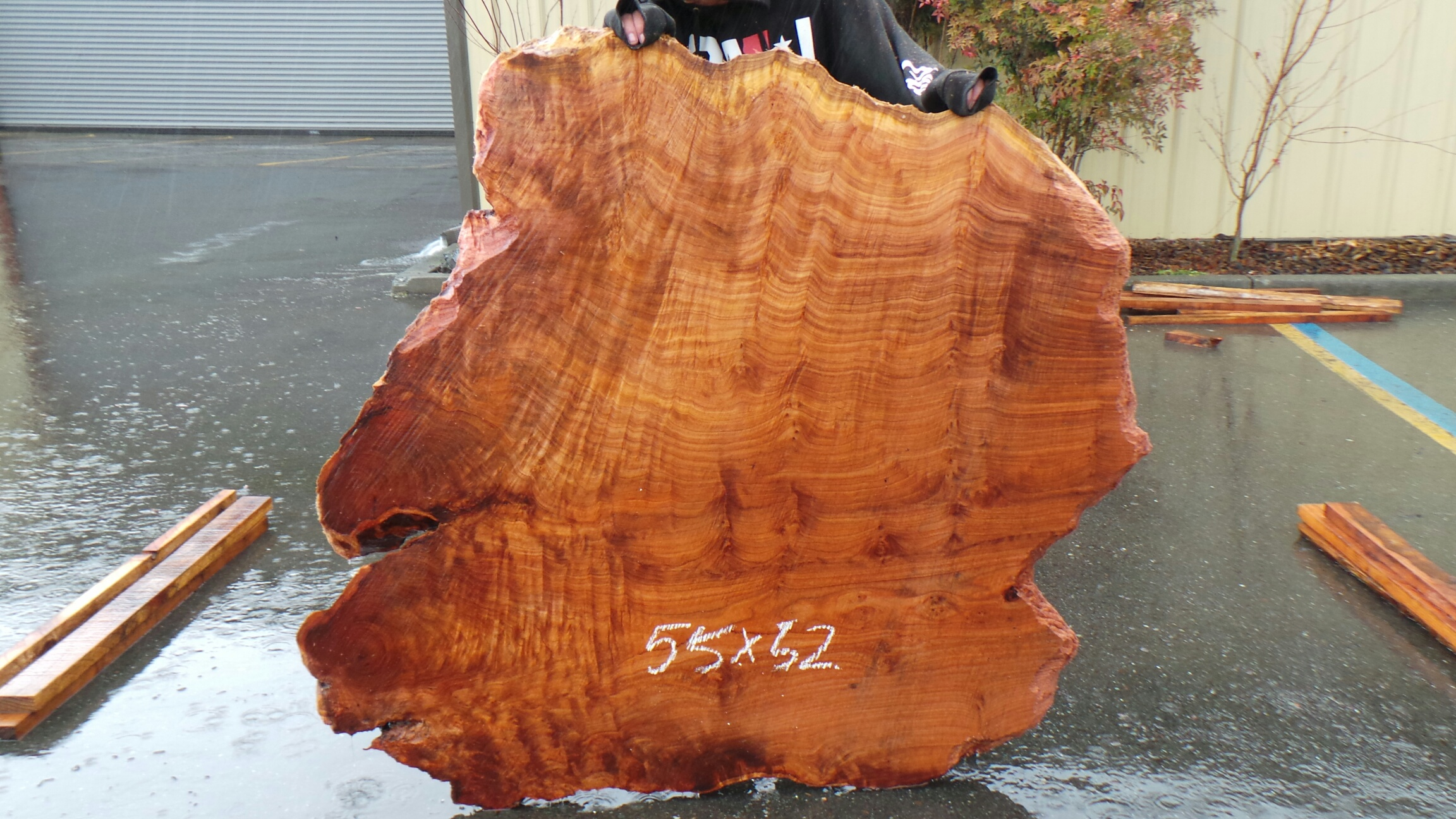 Highly Figured Redwood Slab - Curly Wood Grain and Natural Stripes