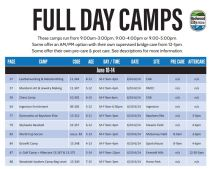 Full Day Camp- image