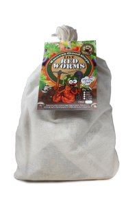 Buy 600 Red Wigglers - Composting Worms