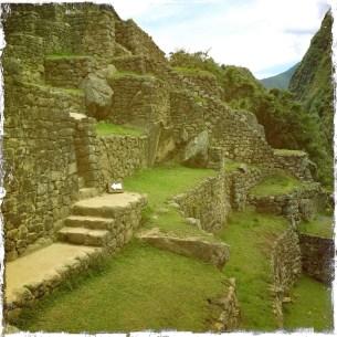 Picchu3