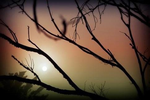 Sun Spot atop Davidson