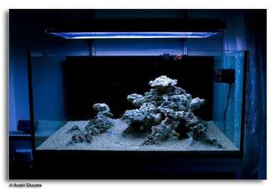 reef tools - reef aquarium, reef tank, reef product ...