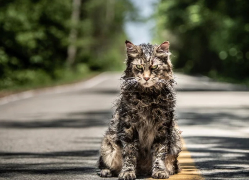 Sometimes dead IS better: new 'Pet Sematary' trailer