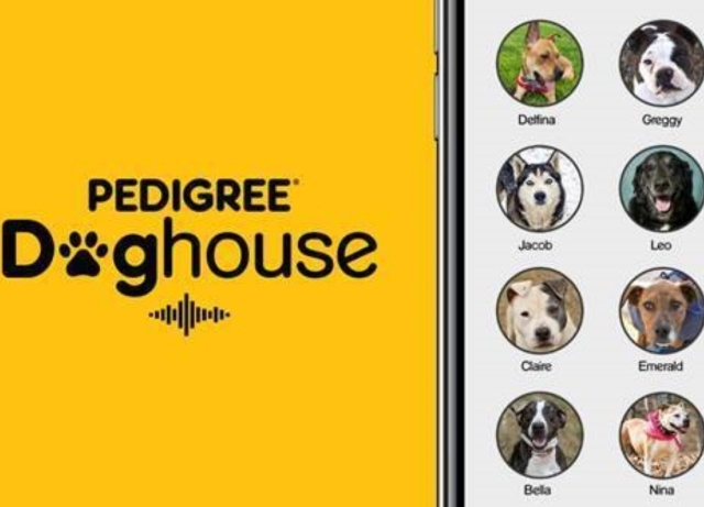 Pedigree turns Clubhouse into the Doghouse