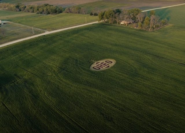 OREO: Crop circles offer aliens peaceful welcome