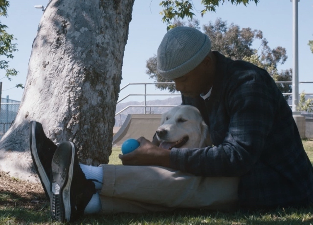 Allianz premieres short film on Olympians, mental health and emotional support dogs