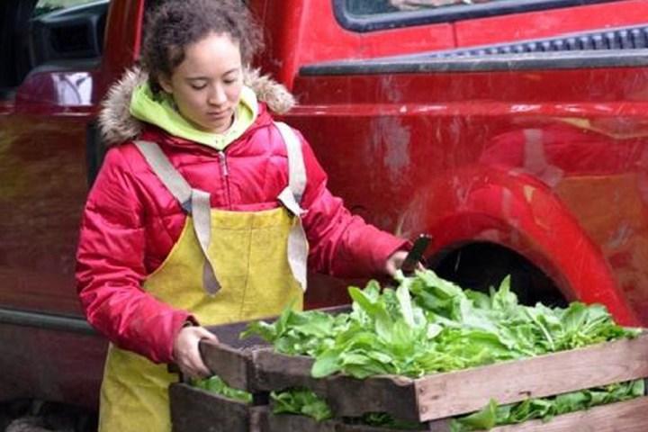 Sommer's doc focuses on Illinois organic farm family