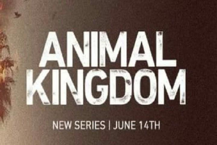Sarofsky creates main titles for new TNT crime show