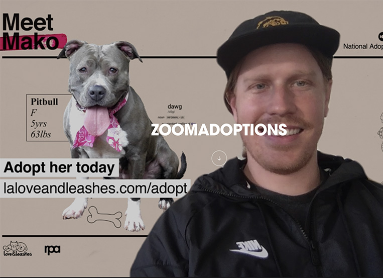 RPA launches 'ZoomAdoptions' shelter pet backgrounds
