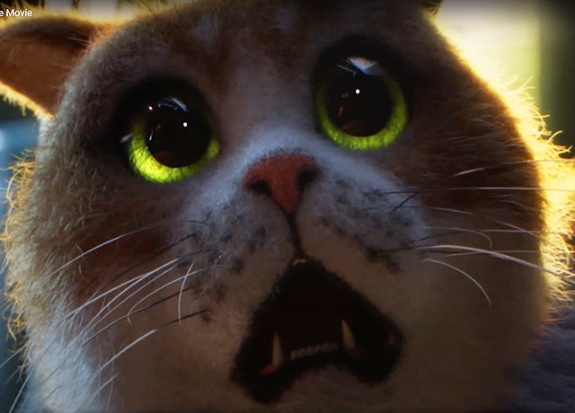Two paws up for Scaredy Cat first horror movie for cats