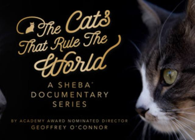 "SHEBA Brand Launches ""The Cats That Rule The World"""