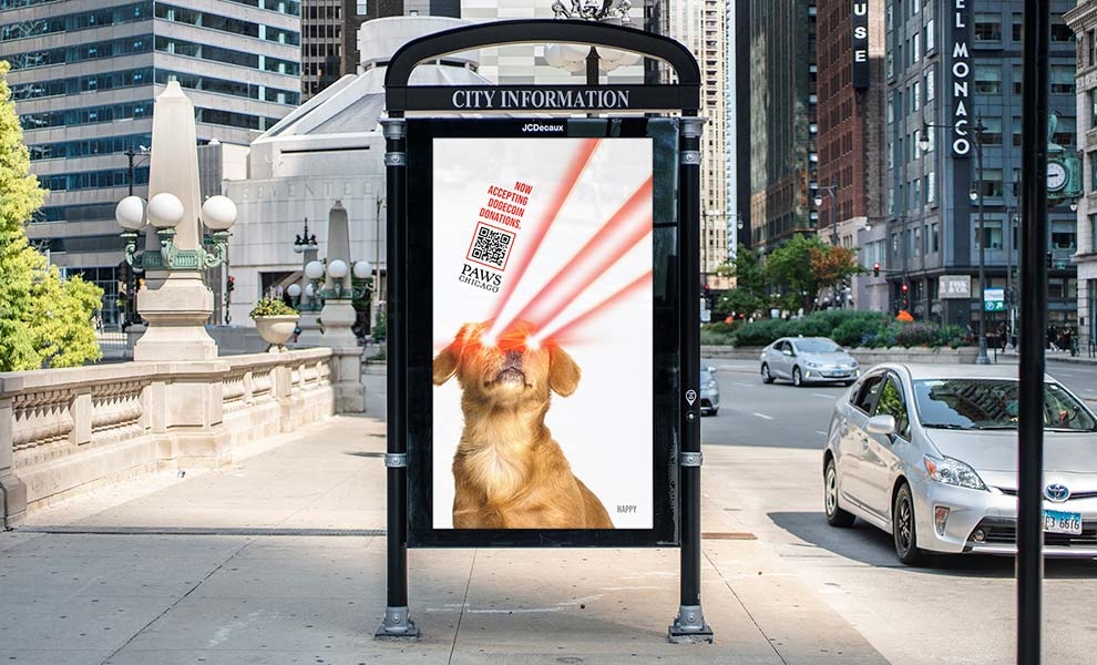 PAWS Chicago launches Dogenations for donations via cryptocurrency