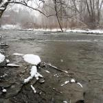 Upper Elk Creek