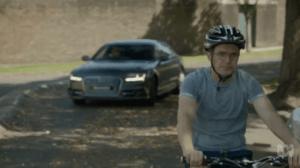 barney david potter bike rake