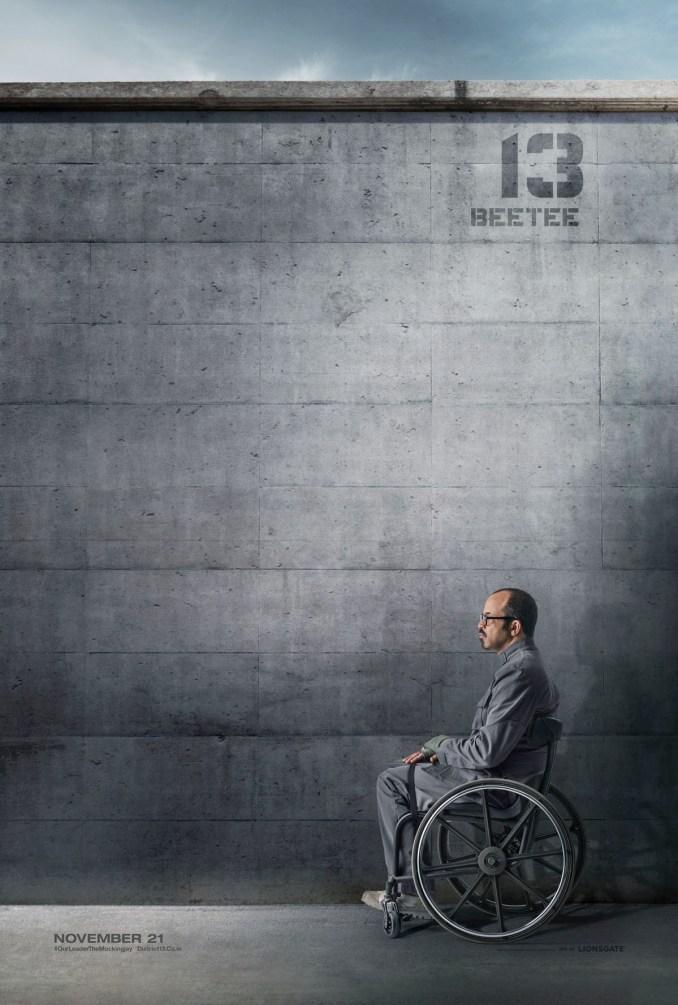 Hunger Games Mockingjay District 13 poster (2) - Copy