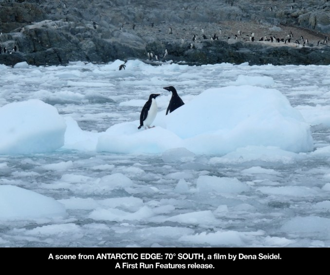 antarctic edge 4