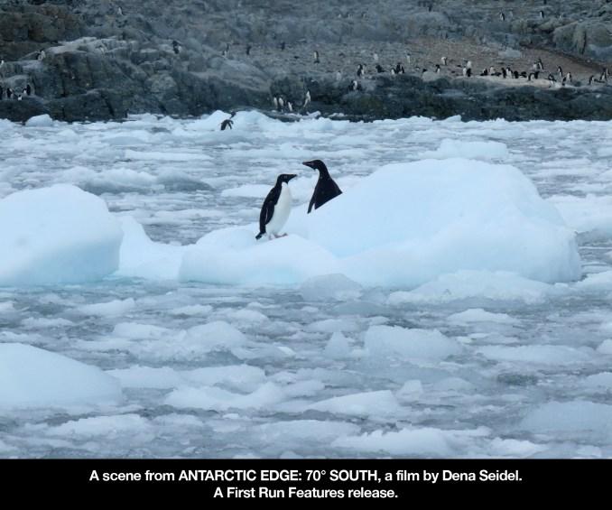 antarctic edge 4