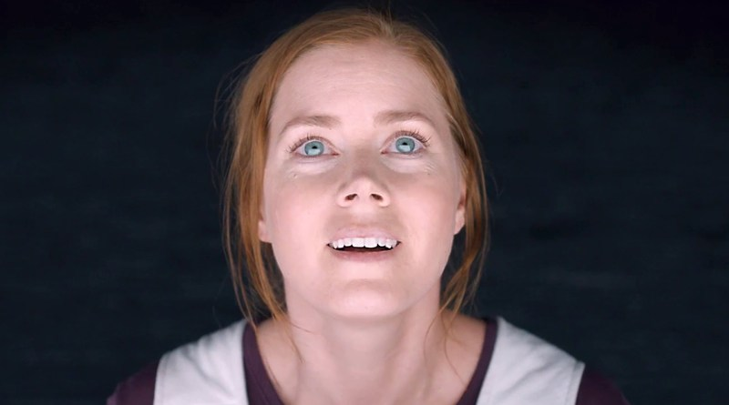 Amy Adams looks astounded towards the viewer in this still from the 2016 sci-fi film, Arrival.