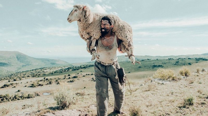 John Kepe, the main character of Sew The Winter To My Skin, holds a stolen sheep in the middle of a field.