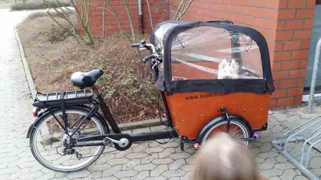 Babboe Big E Test Erfahrungen Lastenrad Dreirad