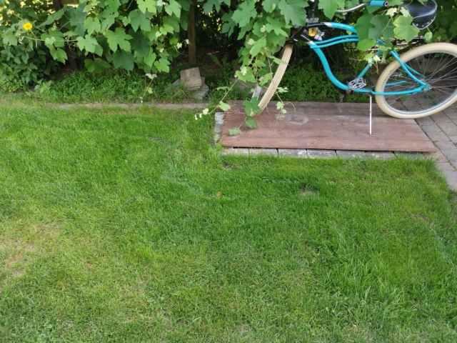 Rasen neu anlegen
