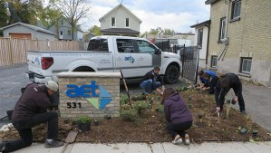 Planting the rain garden at the AET Group demonstration project