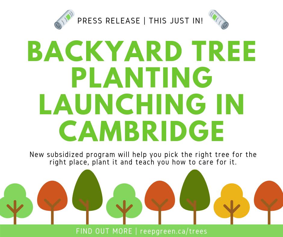 Press Release Graphic - tree planting in cambridge